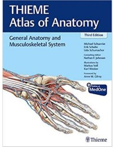 General Anatomy and Musculoskeletal System (THIEME Atlas of Anatomy) , 3ED